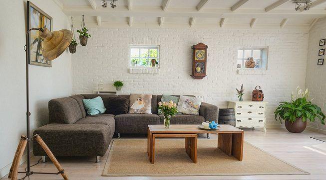 Plantas en hogares