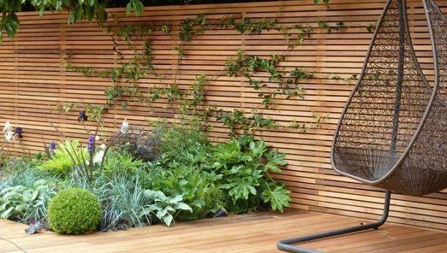 Piso y pared de madera