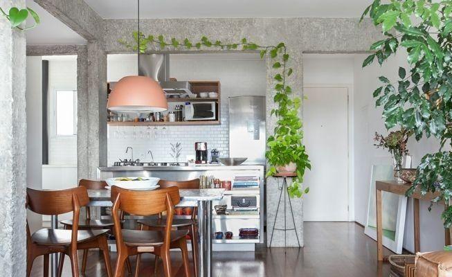 Plantas enredaderas para la cocina