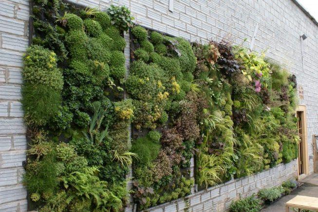 estilos de jardin